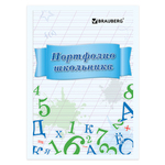ВКЛАДЫШИ ДЛЯ ПОРТФОЛИО УЧЕНИКА А4 16Л.BRAUBERG 127547