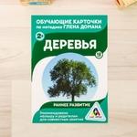 ОБУЧАЮЩИЕ КАРТОЧКИ Г.ДОМАНА 'ДЕРЕВЬЯ' 3871988
